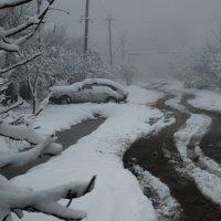 На Кубань пришла зима :: Евгений Астахов