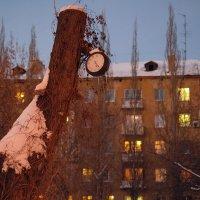 время вечер :: StudioRAK Ragozin Alexey