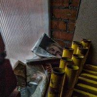 О выстрелах, по сути, холостых... :: Ирина Данилова