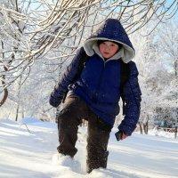 Однажды в студёную зимнюю пору, с трубою в руке..:) :: Андрей Заломленков