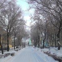 Будни в Новом году))) :: Владимир Звягин
