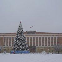 Снежный январь! :: Татьяна