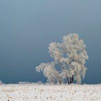 на границе с туманом :: Дмитрий Брошко