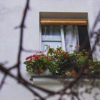 Париж :: Ольга