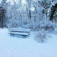 Зимняя скамеечка :: Сергей F