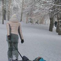 Витенька едет, а мама везет..... :: Tatiana Markova