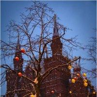 Новогодние деревья на Красной площади . :: Игорь Абламейко