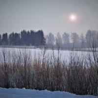 Зимнее солнце 3 :: Валерий Талашов