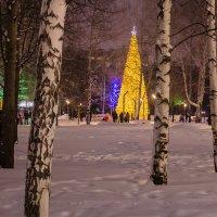 Рождество :: Андрей Щетинин
