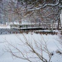 Зимнее время :: Евгения К