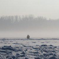 Туман :: Михаил Цегалко