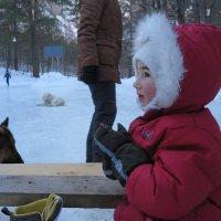 мороз :: Вадим Бурмистров