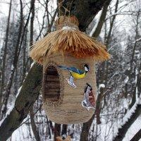 Кормушка для птиц, сделанная с любовью :: Елена Павлова (Смолова)