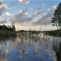 кусочек лоскутного неба :: liudmila drake