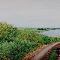 Дорога к реке Челбас :: Михаил