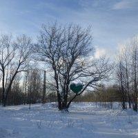 Горкинско-Ометьевский лес :: Наиля