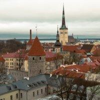 Вид на Таллин :: Андрей Кулаков