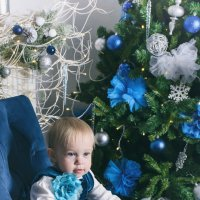 В ожидании Нового года :: Юлия Сапрыкина