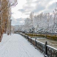 Тропинки зимнего парка :: Юрий Яловенко