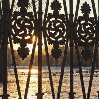 Солнце в Юсуповском саду :: Вера Моисеева
