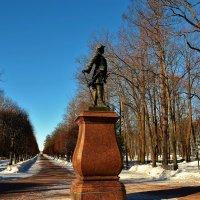 Памятник Петру Первому на Марлинской аллее... :: Sergey Gordoff