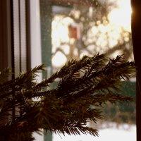 Дух Нового года) :: Алла Качуро