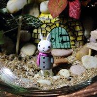 Кроличья нора 4 :: Marina K