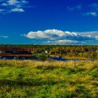 Вид на озеро :: Ольга Нежикова