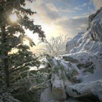Морозный, солнечный денёк :: Галина Ильясова