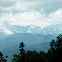 В горах Адыгеи :: Надежда