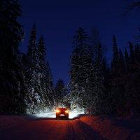 Дорога в зимнем лесу. :: Андрей Леднев