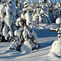 Зимняя одежда :: Leonid Rutov