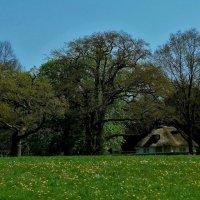 Jenischpark Hamburg (серия). Домик с камышовой крышей :: Nina Yudicheva