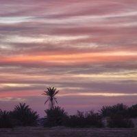 Утро в пустыне :: Ефим Журбин