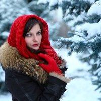 Зима :: VikTori Knyazeva