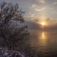 Холодный январский вечер 2016 :: Юрий Клишин