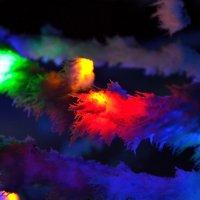 Пушистый цвет :: Александр
