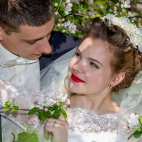 свадьба весной у цветущей яблоньи :: Егор Чеботаренко