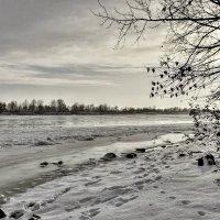 Зимний Дон. :: владимир