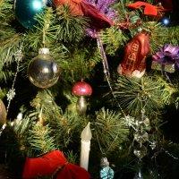 Новогоднее чудо :: Светлана Ларионова