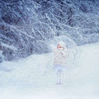 Зимняя сказка :: Виктория Дубровская