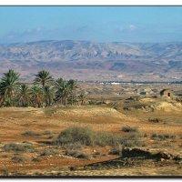 В долине Иордана. :: Leonid Korenfeld