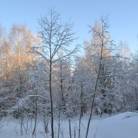 мороз и солнце... :: Светлана