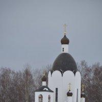 Церковь возле источника :: Светлана Ларионова