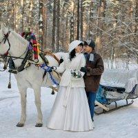 Прелесть зимних свадеб :: Дмитрий Конев