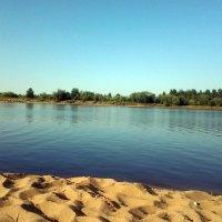 Пляж в Сыктывкаре. :: Светлана Громова