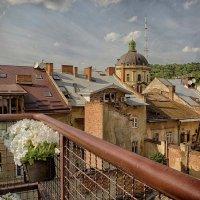 Старый город :: Елена Данько