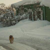 По старым улочкам... :: Альмира Юсупова