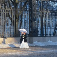 в Петербурге :: Елена
