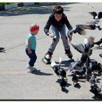 Дети  и  голуби. :: Ivana
